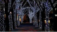 圣诞灯夜找水晶