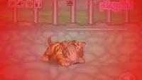 照顾小老虎1