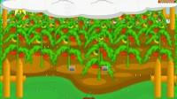 灌溉番茄1