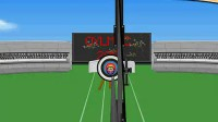 伦敦奥运射箭赛1