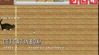 猫咪回到箱子里1