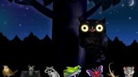 大森林里的小动物游戏展示