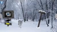 北极森林逃生通关攻略