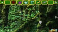 浣熊逃离森林游戏攻略